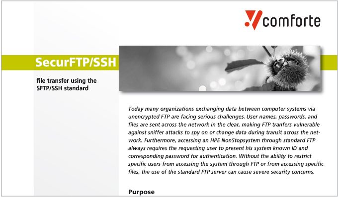 Fact sheet: SecurFTP/SSH