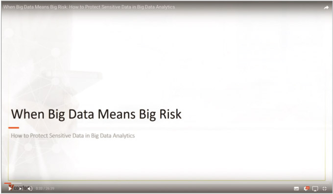 Webinar: When Big Data Means Big Risk